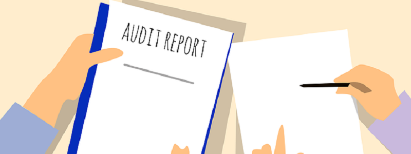 someone holding an audit report